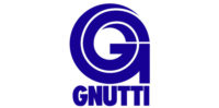 team 4.0 logo GNUTTI CARLO